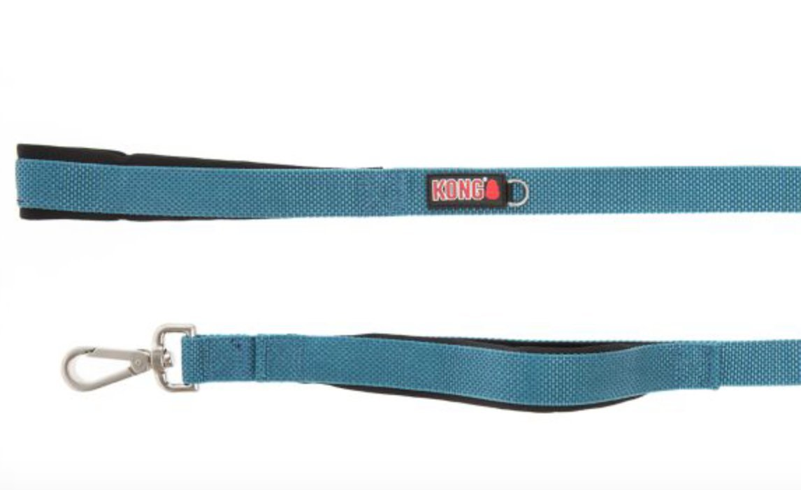 KONG by Barker Brands Inc. Traffic Handle Quick Control Leash 4' (Blue) by KONG