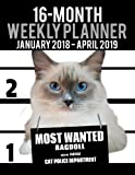 2018 2019 weekly planner most wanted ragdoll daily diary monthly yearly calendar large 8 5 x 11 schedule journal organizer cat planners 2018 2019 volume 16