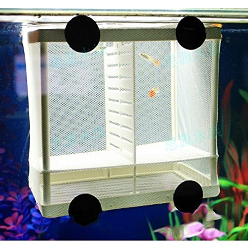 Kangkang@ DIY Aquarium Fish Breeding Box Tank Fish Incubator Net Fry Baby Fish Hatchery Equipment Isolation Net Box Tank with Suction Cup Size S/L (S) (Isolation Box)