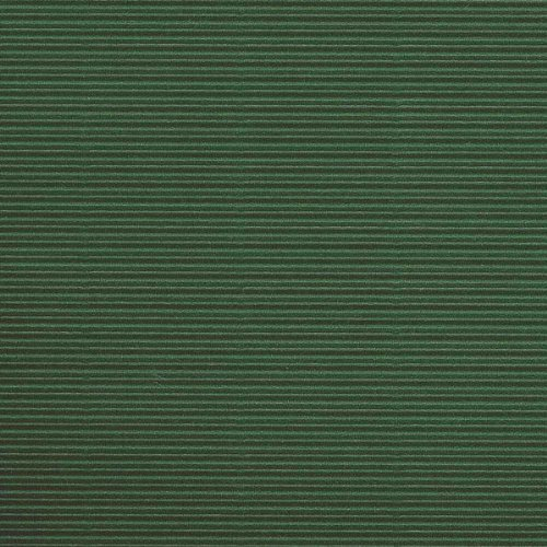 Canson 200992617 Nastro Cartone Ondulato da 50X70 cm, Verde