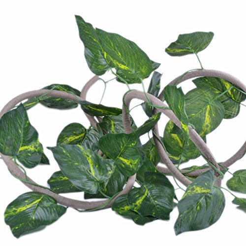 pranovo Reptile Climbing Branch Jungle Vine Terrarium Vines Flexible Pet Habitat Decor with Suction Cups and Realistic Vine Leaf for Crested Gecko Lizard Spider Scorpion Snake Other Small Animals