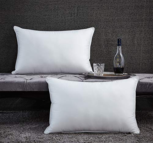 Premium Goose Down Pillow - Standard / Queen Size - 750 Fill Power - 1200 Thread Count 100% Egyptian Cotton Cover, White (Soft - Medium Firm)