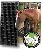 Equine Scratcher, Black - One Size