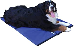 """CoolerDog Dog Cooling Pad Dog Cooling Products Hydro Cooling Mat (23""""x18"""")"""