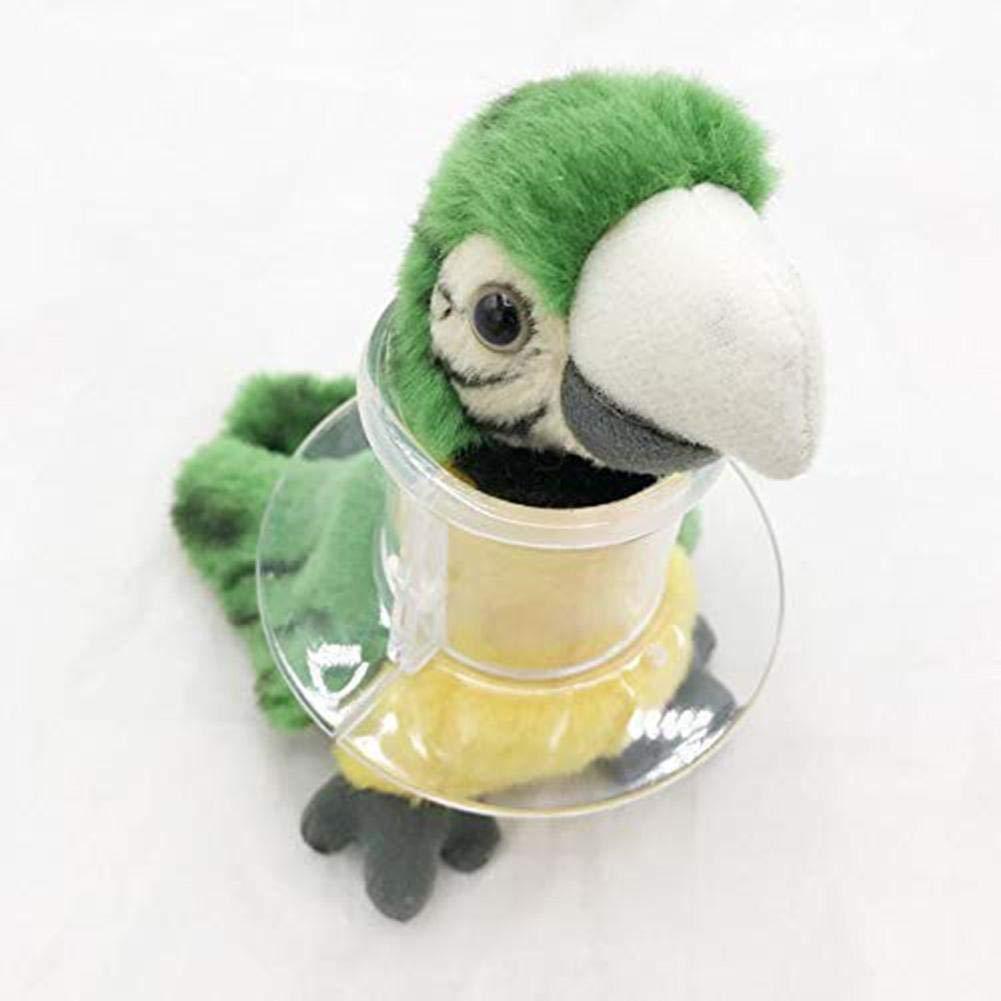 Collar de Loro Mascota Pájaro Arnés y Correa Protectora de Cuentas ...