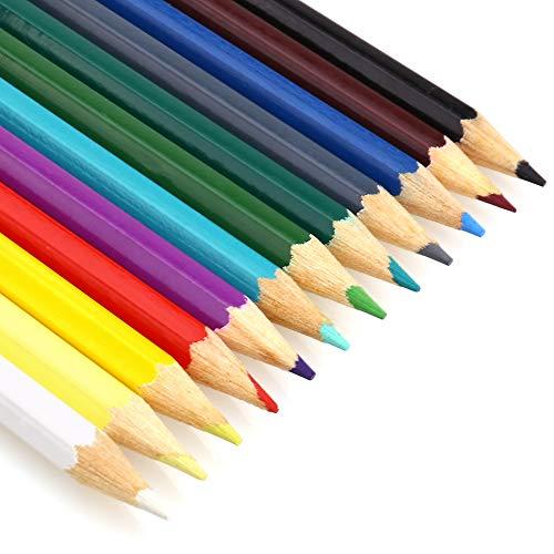 色鉛筆 油性色鉛筆 カラーペンシル 12色セット アート鉛筆 画材セット 子供 塗り絵 イラスト用 収納ケース付き (12色)