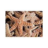 Glass Cutting Board Collection Of Starfish