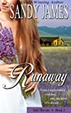 Runaway (Safe Havens Book 2)
