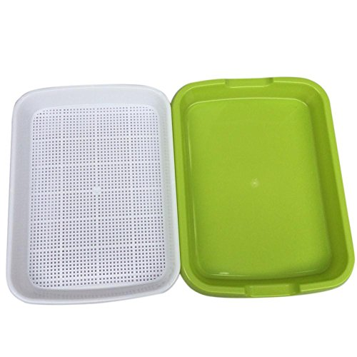 Looking for a seedling tray sprout plate? Have a look at this 2019 guide!