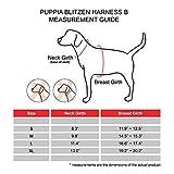 Puppia Blitzen Harness-B for Pets, Red, Medium