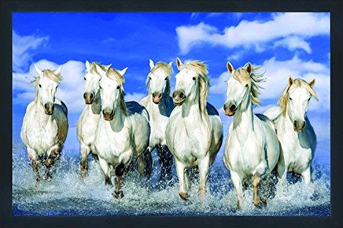 7 white horse wallpaper hd