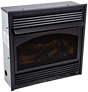 Amazon.com: Comfort Flame CGCFTNA Vent-Free Single Burner ...