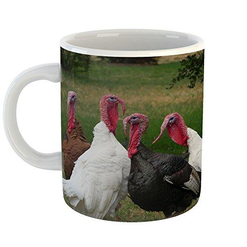 Westlake Art - Coffee Cup Mug - Turkey Domesticated - Modern Picture Photography Artwork Home Office Birthday Gift - 11oz (qmr 566) (566 Turkey)
