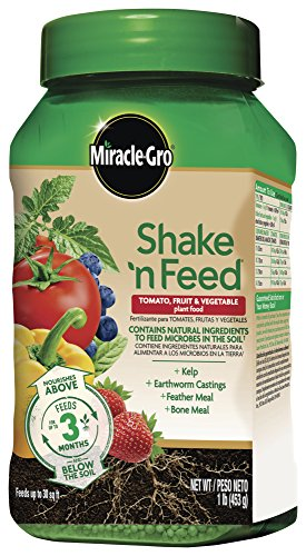 - Miracle-Gro 3002510 Shake 'N Feed Tomato, Fruits and Vegetables Continuous Release Plant Food Plus Calcium