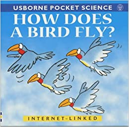 Book How Does a Bird Fly? (Usborne Pocket Science)