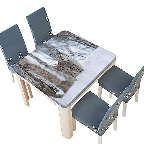 PINAFORE Polyester Lynx Snowy Cold Forest Norway Nordic Country Wildlife Apex Predator Light Brown White Linen Cotton Tablecloths Kitchen Room 65 x 65 INCH (Elastic Edge) ()