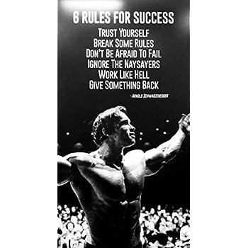 bribase shop Arnold Schwarzenegger Poster 24 inch x 13 inch