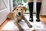 Hartz Home Protection Lavender Scented Odor