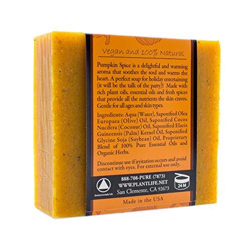 Pumpkin Spice Body Scrub - 3