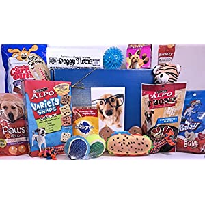 Specialty Gift Boxes Jumbo Dog Gift Box Basket For Favorite Canine Fur Baby Perfect for Dog Lover Dog Birthday Christmas Furry Pet Friend Prime Treats Toys