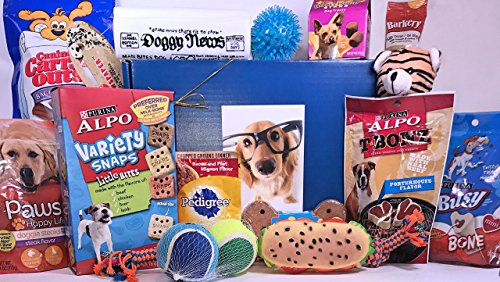 Mini Snaps Liver (Jumbo Dog Gift Box Basket for Favorite Canine Fur Baby Perfect for Dog Lover Dog Birthday Christmas Furry Pet Friend Prime Treats Toys)
