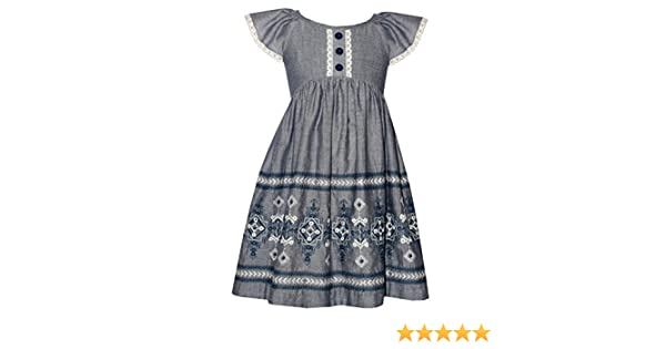 42c2a338450f Amazon.com  Bonnie Jean Little Girls Chambray Embroidered Dress  Clothing