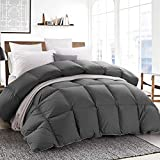 ROYALAY Luxurious All Seasons Goose Down Comforter-Solid Hypo-allergenic Duvet Insert 1200 Thread Count 800FP 100% Cotton Shell Down Proof with Tabs(Gray, Queen)