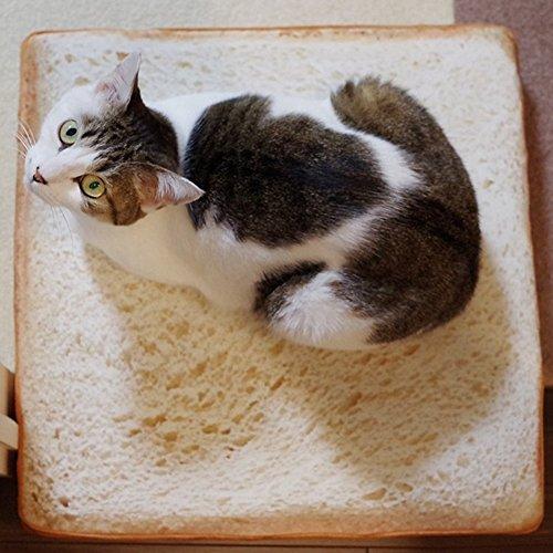 HEART SPEAKER Cute Soft Toast Slice Bread Shape Plush Sponges Fillers Pet Mat