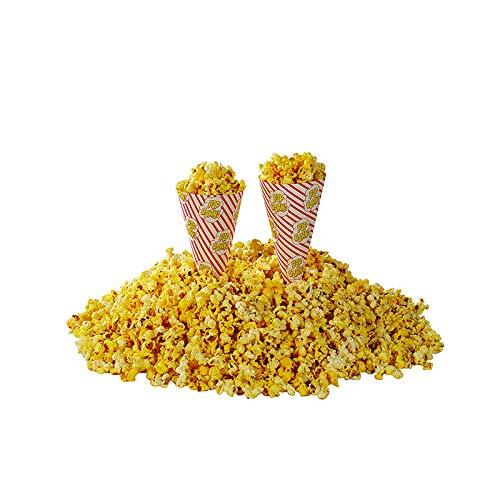 Beach City Wholesalers Popcorn Cones | Cone-O-Corn Cups (2,500 count)