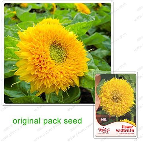 25 semillas / pack, semillas de girasol, semillas en macetas ...
