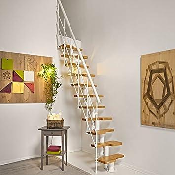 Espacio bajo Escaleras oak30 X trà fonta Not. geschoß Altura 231 – 280 cm. niveles Madera de Roble en clara sonido: Amazon.es: Bricolaje y herramientas
