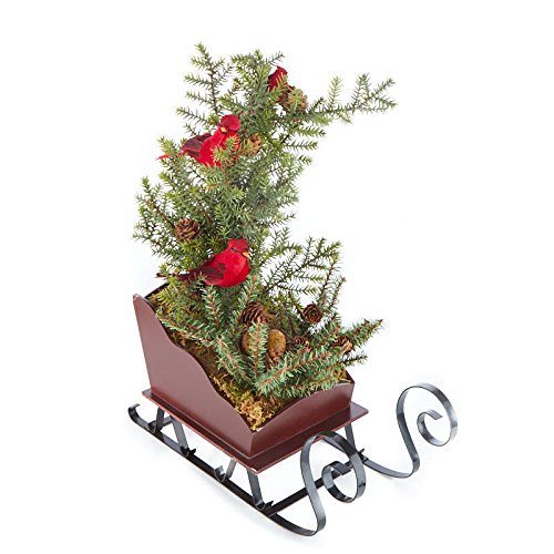 Factory Direct Craft Artificial Pine Tree with Red Artificial Cardinals in Wooden Sleigh Planter for Home Decor, Christmas Decorating, and Displaying