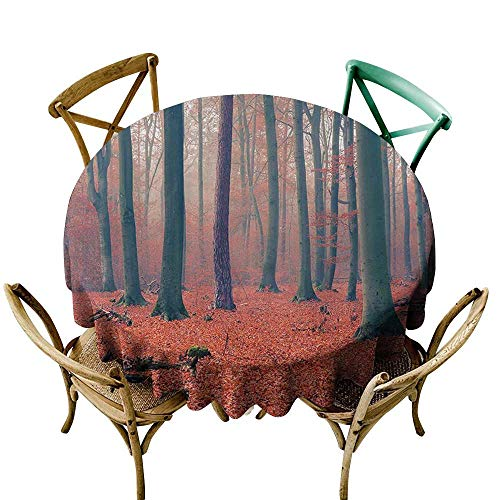 Jbgzzm Stain-Resistant Tablecloth Farm House Decor Collection Foggy Forest Tree Trunks Leaves in Rich Autumn Color Picture Print Easy to Clean D47 Salmon Tan