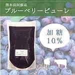 【 冷凍 】 熊本県阿蘇産 ブルーベリー ピューレ (加糖10%) 1kg