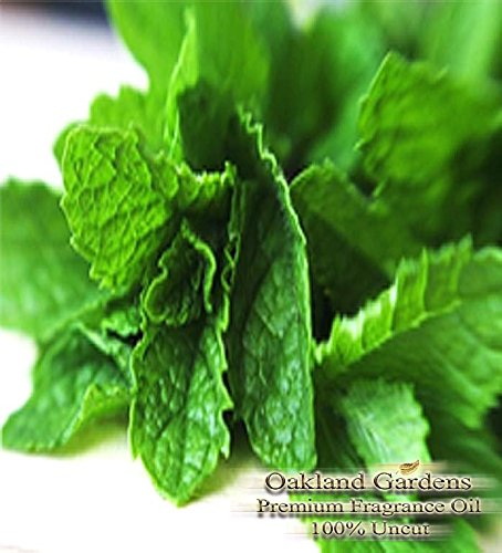 Peppermint Scented Fragrance Oil - Formulated to work with Reed Sticks & Diffuser - By Oakland Gardens (Peppermint - 2oz Bottle)