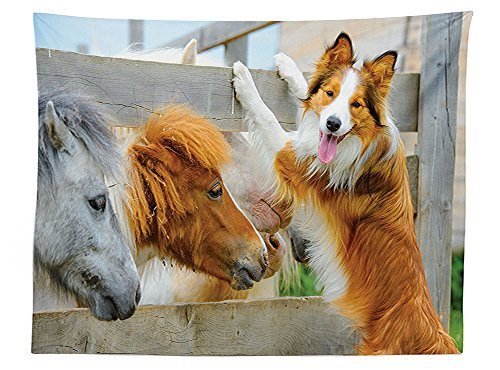cor Tablecloth Pony and Border Collie Dog are Dating Friendship Companionship Themed Nature Picture Dining Room Kitchen Rectangular Table Cover ()