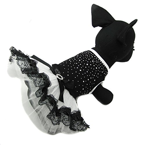 Alfie Pet - Rosie Tutu Party Dress - Size: Small]()