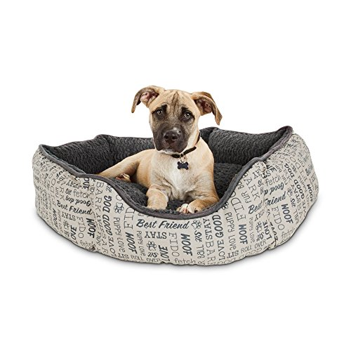 Harmony Woof Printed Dog Bed, Medium