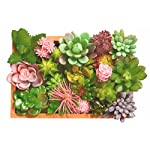 MEANT2TOBE-Artificial-Succulent-Plants-with-Home-Shape-Chalkboard-Pot-Colorful-Assorted-Plants-for-Beautiful-Home-dcor-Realistic-Faux-Succulents-Plants-for-Home-Office-Outdoor-Decorations-etc