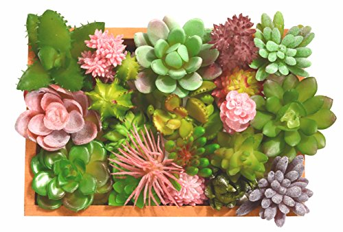MEANT2TOBE Mixed Artificial Succulent Flowers Plants, Faux Succulents Fake Succulent Plants, Mini Succulent & Cactus Plants in Wood Box, Assorted Decorative Faux Succulents (+ 1 Wood Box)