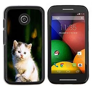 """Be-Star Único Patrón Plástico Duro Fundas Cover Cubre Hard Case Cover Para Motorola Moto E / XT1021 / XT1022 ( Lindo triste Blanco Furry Fuzzy gatito gato"""" )"""