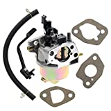AUTOKAY Carburetor with w/Gaskets for Champion Power Equipment 3500 4000 Watts Gas Generator with Fuel Line Fits Models 46558, 46561, 46596, 46533, 46534, 46535