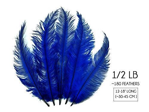 Junkanoo Carnival Costumes - 1/2 Lb - 12-18