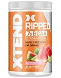 Scivation Xtend Ripped Bcaa Powder, Orchard Splash, 30 Servings - Stimulant Free Branched Chain Amino Acids, Keto Friendly, bcaas, for Muscle Recovery with Cla & L Carnitine (Packaging May Vary)