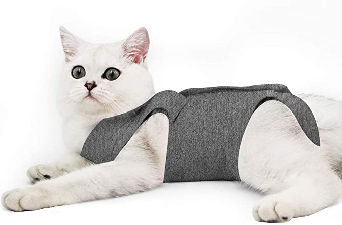 e-Collar Alternativa per Gatti e Cani Home Abbigliamento Cat Professionale Recupero Vestito per Addominali ferite o malattie della Pelle Dopo Un Intervento Chirurgico Wear