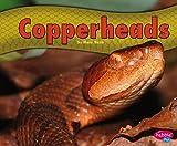 Copperheads, Mary R. Dunn, 1476520712