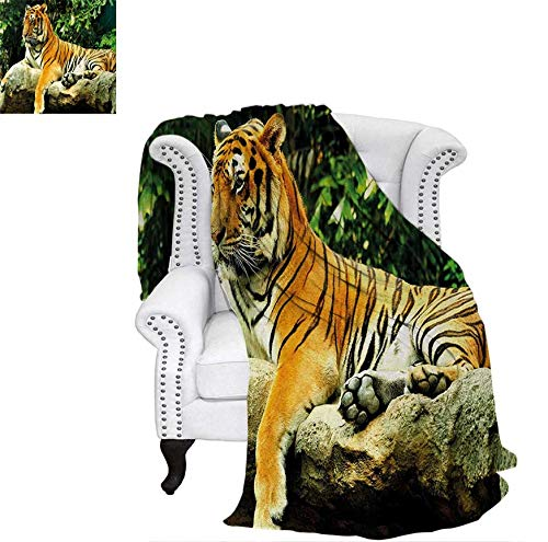 Super Soft Lightweight Blanket Resting Feline in The Forest on a Large Rock Sublime Carnivore Beast Beautiful Nature Oversized Travel Throw Cover Blanket 80