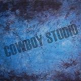 CowboyStudio Hand Painted 10 X 12 Feet Blue Purple Muslin Photography Backdrop