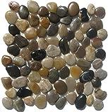 Mixed Natural Mosaic Pebble Stone Tile / 1 sq ft