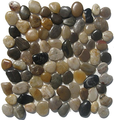 Mixed Natural River Rock Pebble Tile / 10 Sq (Limestone Mosaic Tile)